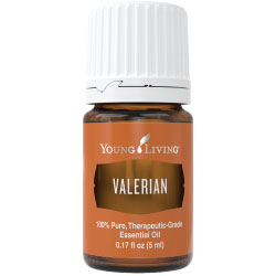 Valerian Essential Oil - 5 ml
